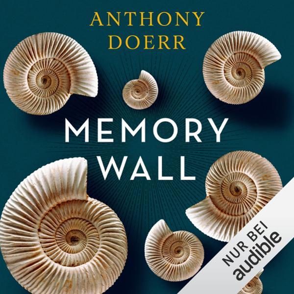 Memory Wall Hörbuch kostenlos downloaden