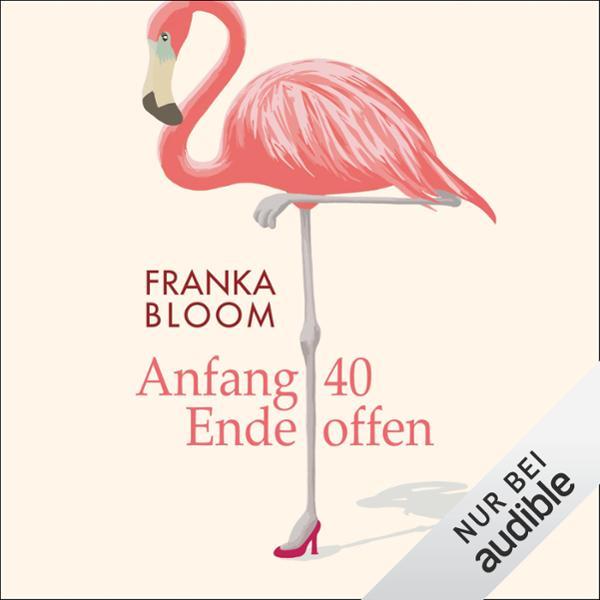 Anfang 40 Hörbuch kostenlos downloaden
