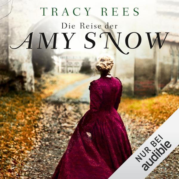 Die Reise der Amy Snow Hörbuch kostenlos downloaden