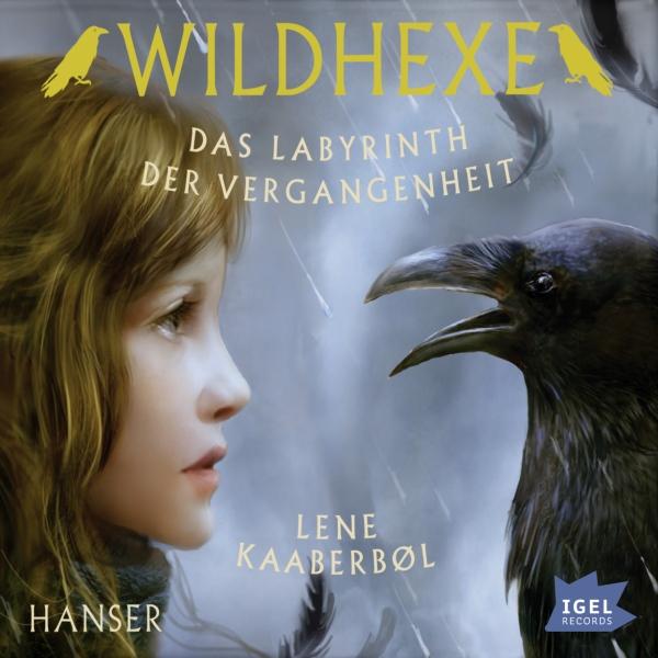 Das Labyrinth der Vergangenheit Hörbuch kostenlos downloaden