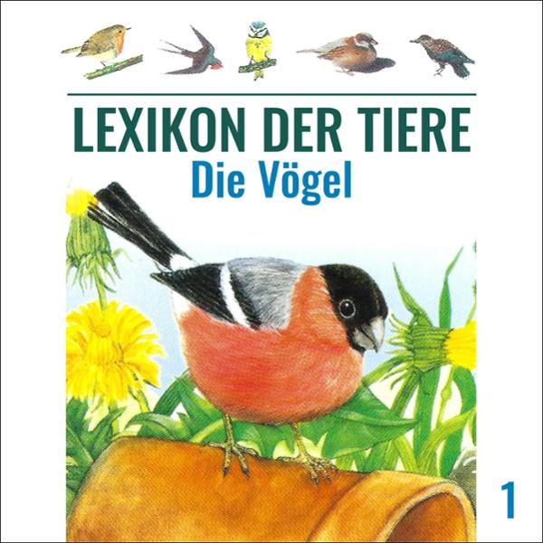Die Vögel Hörbuch kostenlos downloaden